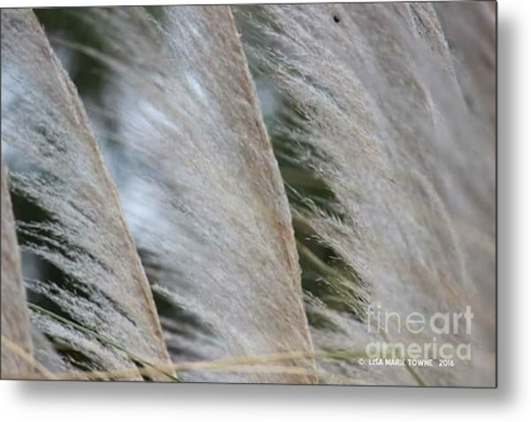 Soft Breeze Metal Print