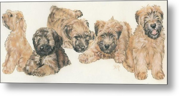 Soft-coated Wheaten Terrier Puppies Metal Print