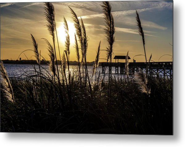 Metal Print featuring the photograph Soft Wind by Eric Christopher Jackson