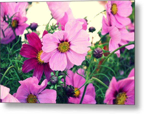 Softly Blowing Metal Print by Cathie Tyler
