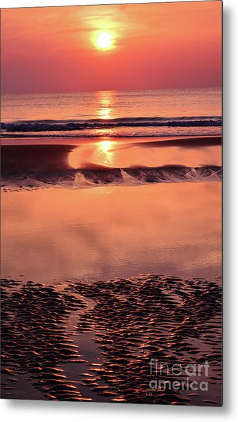 Solemn Reflection Metal Print