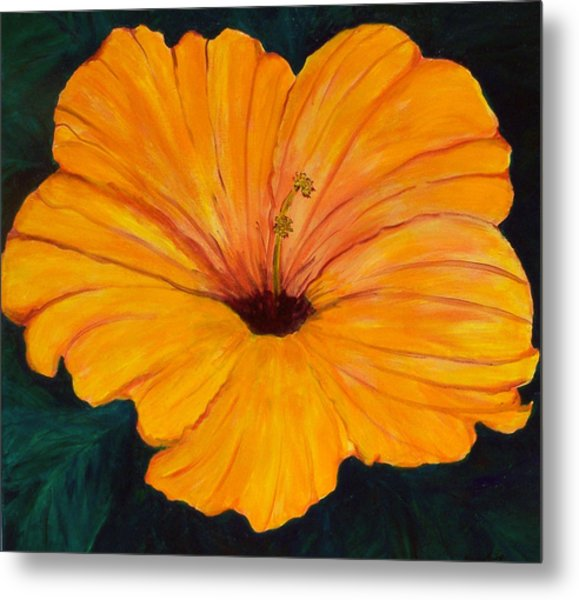 Solid Gold Metal Print by Marcia Paige