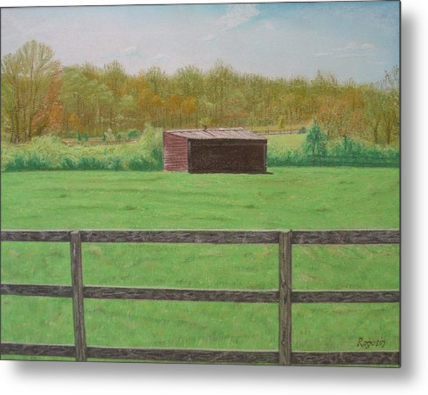 Solitary Shed Metal Print