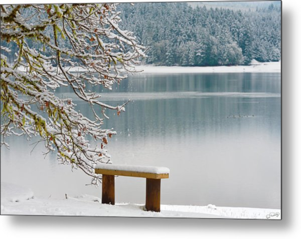 Solitary Snowscape Metal Print