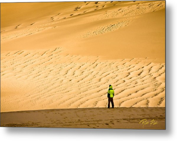 Solitude In The Dunes Metal Print