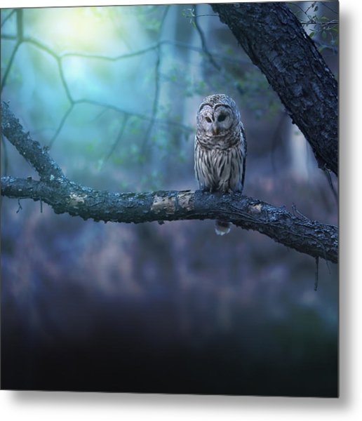 Solitude - Square Metal Print