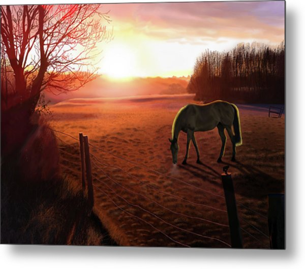 Solstice Sunrise Metal Print