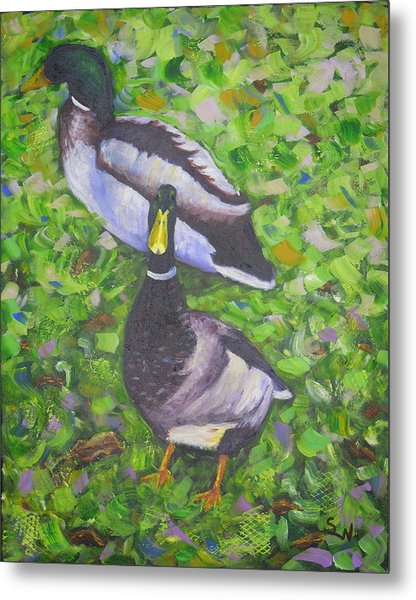 Somerset Ducks Metal Print
