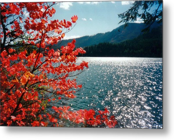 Song Of The Fall. Metal Print by Anastasia Michaels