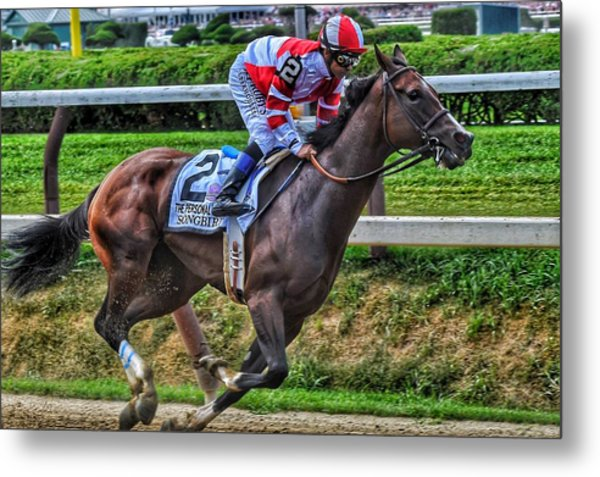 Songbird W Mike Smith Metal Print