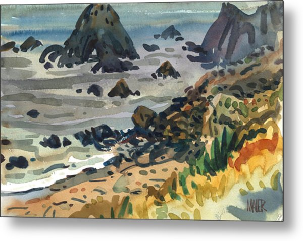 Sonoma Coast Metal Print by Donald Maier