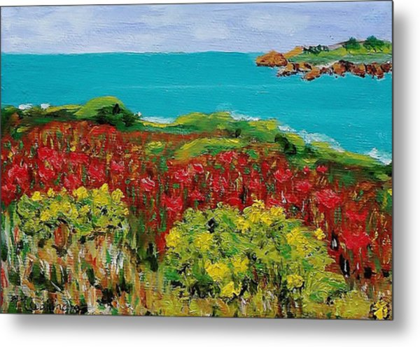 Sonoma Coast With Wildflowers Metal Print