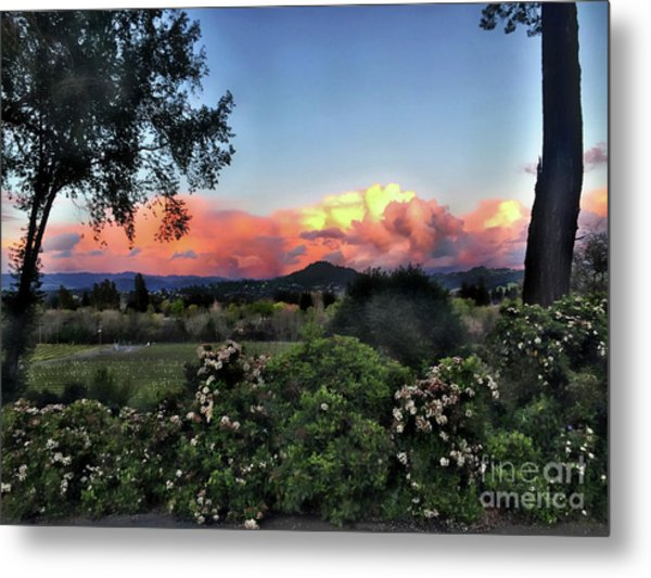 Sonoma County Sunsets Metal Print