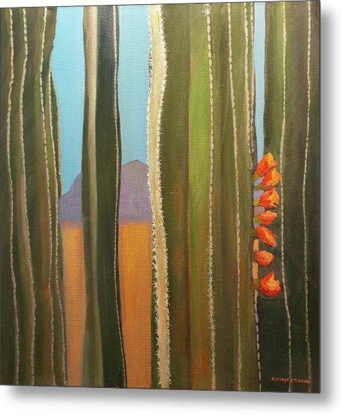 Sonoran Desert Cactus Reds Metal Print