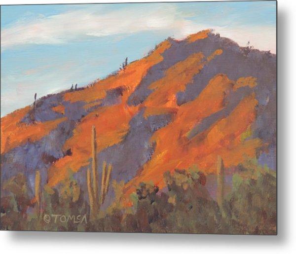 Sonoran Sunset - Art By Bill Tomsa Metal Print