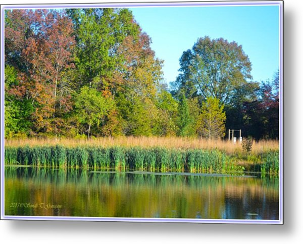 Soothing Reflections Metal Print
