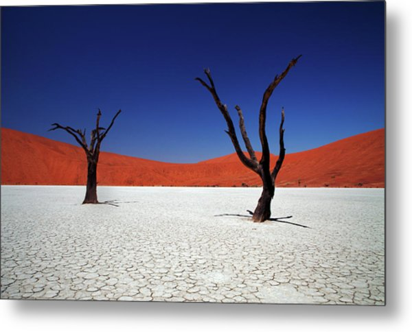 Sossusvlei In Namib Desert, Namibia Metal Print