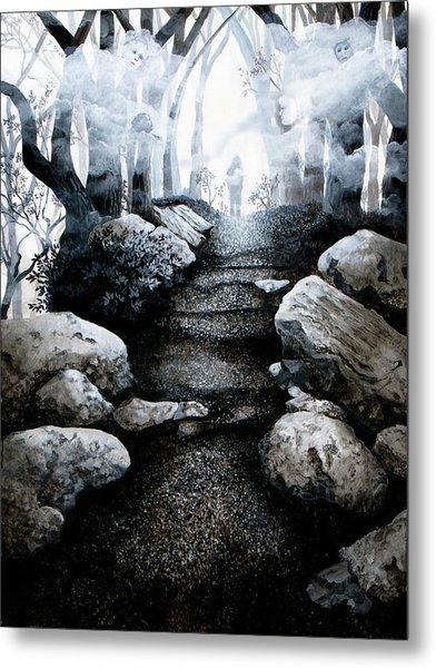 Soul Journey Metal Print