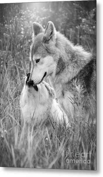 Soul Mates Black And White Metal Print