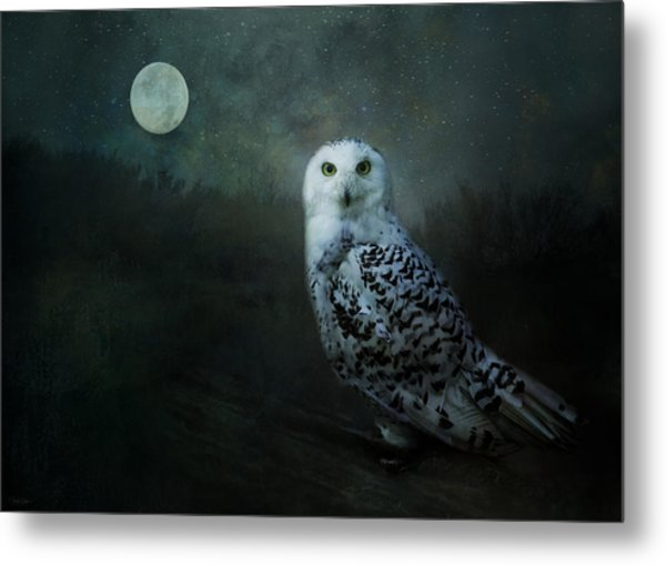Soul Of The Moon Metal Print