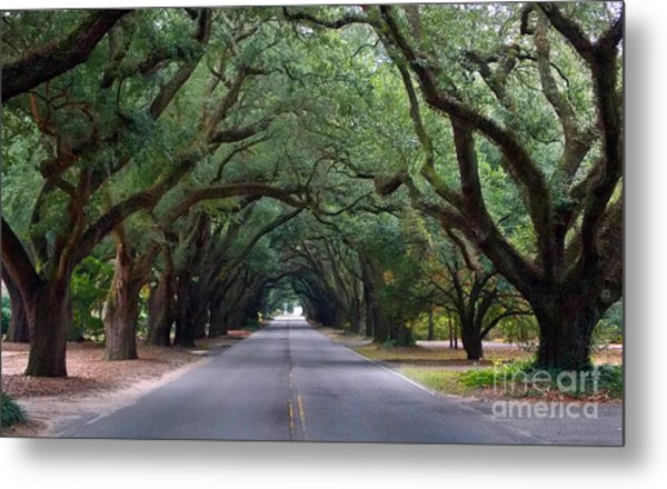 South Boundry Metal Print