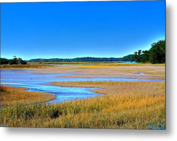 Metal Print featuring the photograph South Carolina Lowcountry H D R by Lisa Wooten