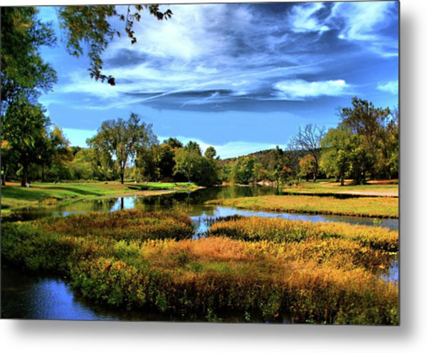South Fork River Metal Print