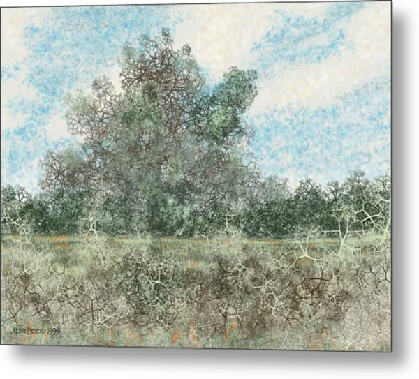 South Texas Brush Country I Metal Print