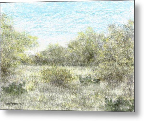 South Texas Brush Country II Metal Print