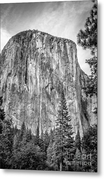 Southwest Face Of El Capitan From Yosemite Valley Metal Print