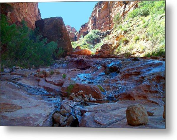 Sowats Creek Kanab Wilderness Grand Canyon National Park Metal Print