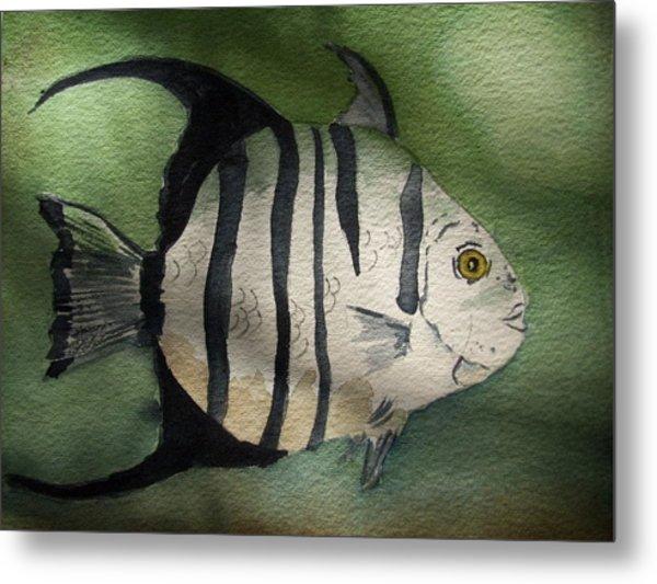 Spadefish Metal Print