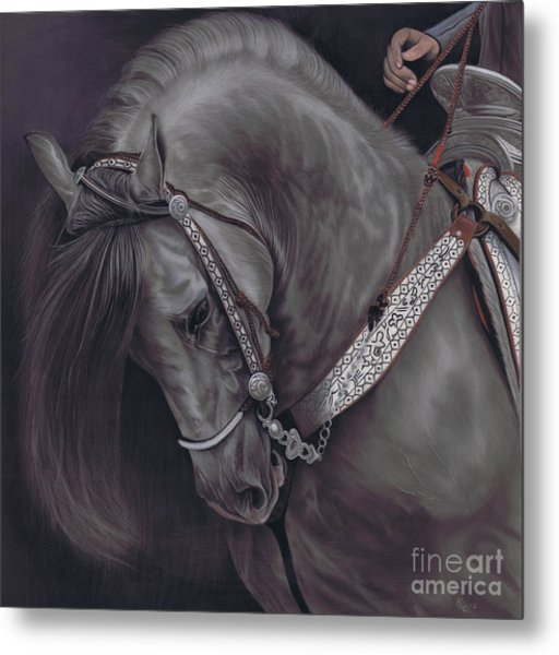 Spanish Horse Metal Print