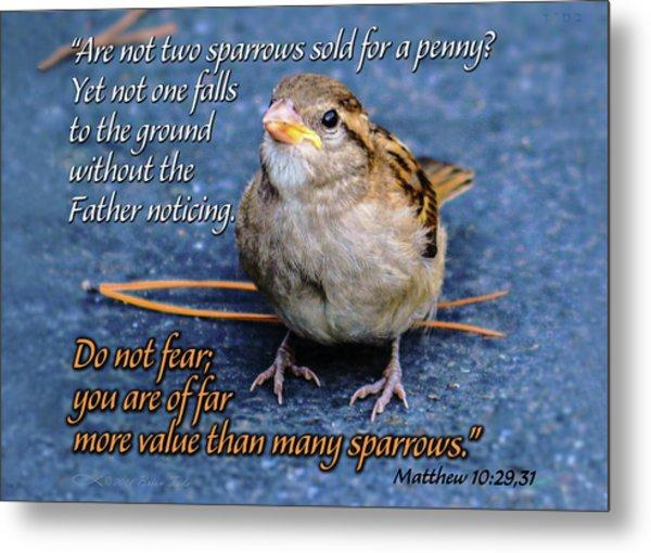 Sparrow Scripture Matthew 10 Metal Print