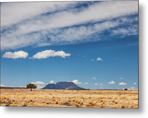 Metal Print featuring the photograph Sparse by Rick Furmanek