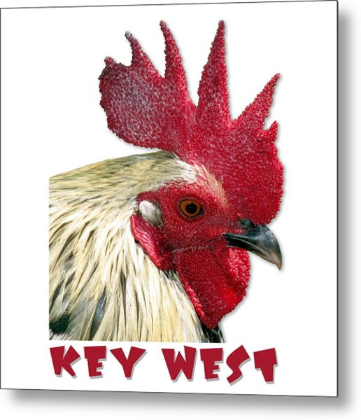 Special Edition Key West Rooster Metal Print