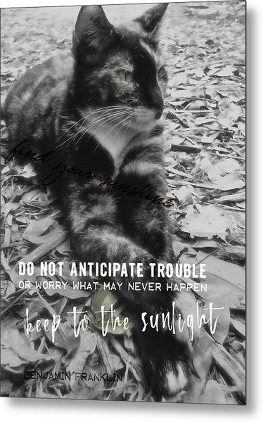Sphinx Quote Metal Print by JAMART Photography