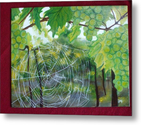 Spider Web In Spring Metal Print by Jessica Meredith