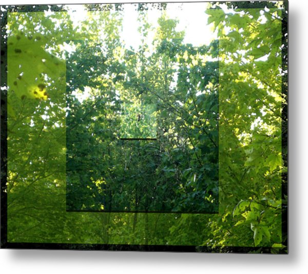 Metal Print featuring the photograph Spider-web Squares by Michelle Audas