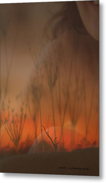 Spirit Of The Land Metal Print