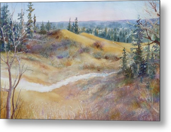 Spirit Sands Metal Print