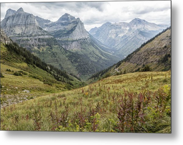 Splendor From Highline Trail - Glacier Metal Print