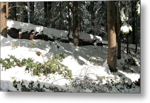 The Splendour Of Snow Metal Print