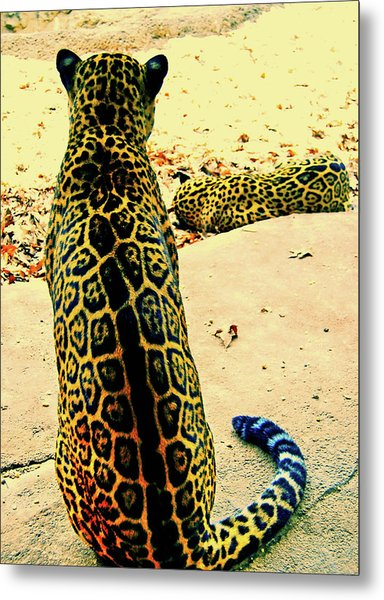 Spotted Siblings Metal Print by JAMART Photography