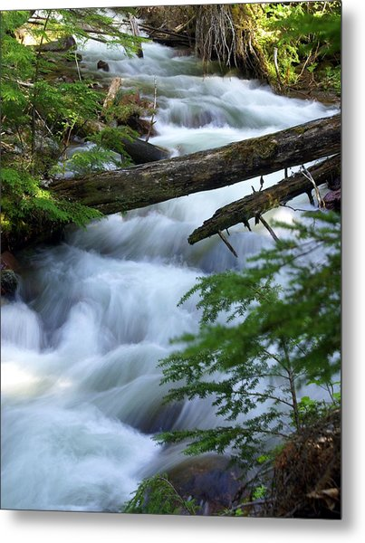 Sprague Creek Glacier National Park Metal Print
