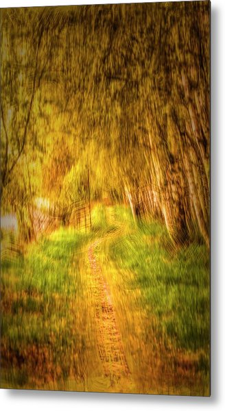 Metal Print featuring the digital art Spring 2017 #g3 by Leif Sohlman