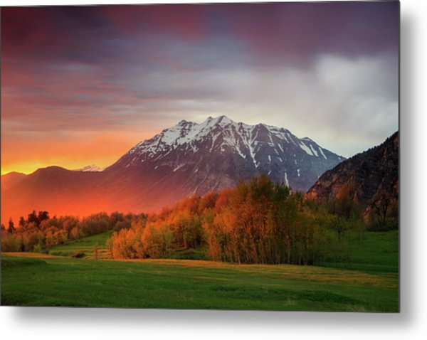 Spring Burner In The Wasatch. Metal Print