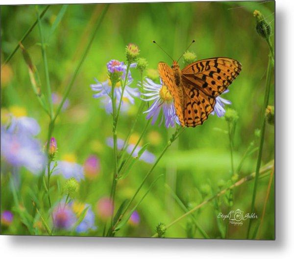 Spring Butterfly Metal Print