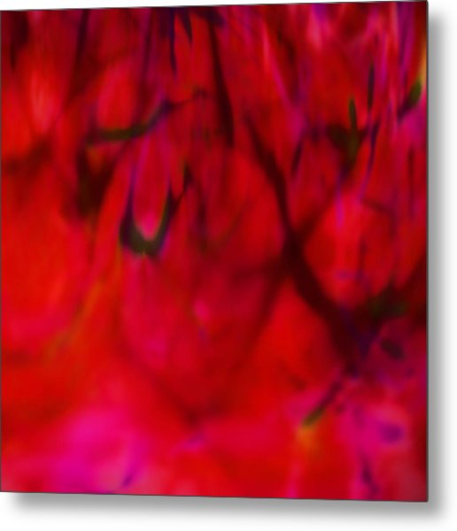 Spring Fabric Metal Print by Eileen Shahbazian