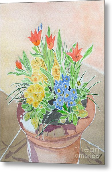 Spring Flowers In Pot Metal Print by Yvonne Johnstone
